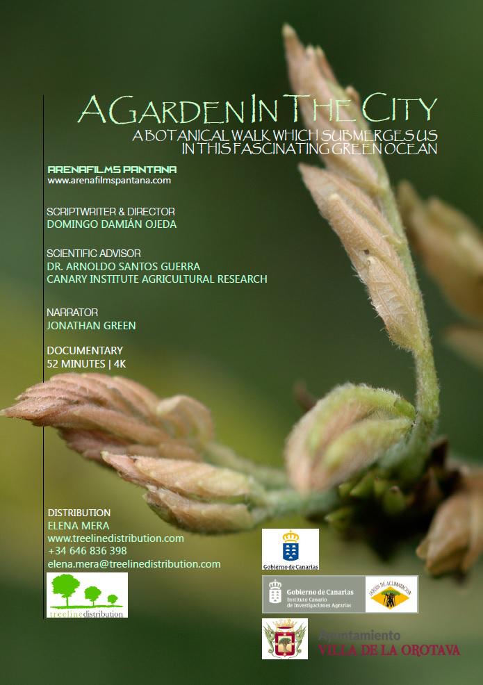 a_garden_in_the_city_1