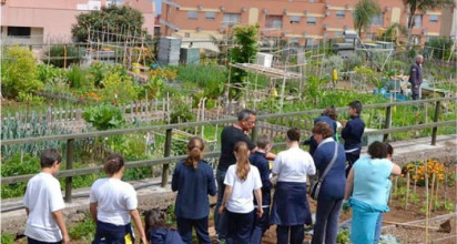 El ayuntamiento acondiciona los huertos ecológicos urbanos, todo un referente de sostenibilidad en Canarias