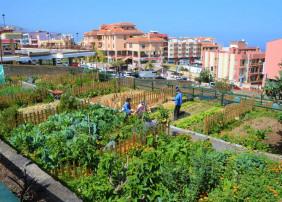 Abierto el plazo de inscripción para solicitar parcela en el Huerto Urbano Ecológico Municipal
