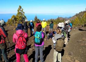 El consistorio villero ofrece rutas temáticas para conocer mejor los espacios naturales protegidos de Tenerife