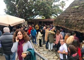 Todo un éxito la IX Feria del Queso de Canarias celebrada el pasado fin de semana en La Orotava