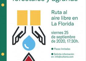 ACTIVIDAD DE PREVENCIÓN DE INCENDIOS EN ZONAS FORESTALES Y AGRARIAS. EN EL BARRIO DE LA FLORIDA